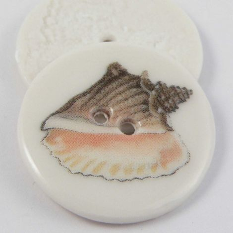 29mm Ceramic Queen Conch Shell 2 Hole Button