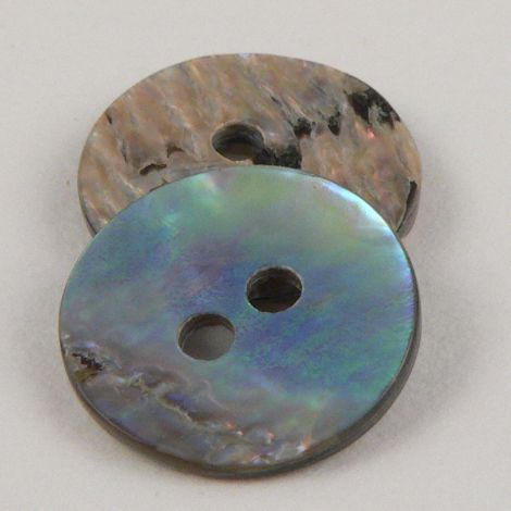 15mm New Zealand Paua Abalone Shell 2 Hole Button