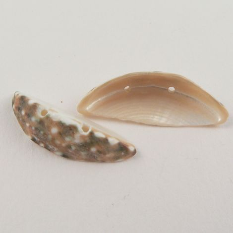 27mm Oblong Cup Sea Shell 2 Hole Button